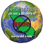 no-redd-org-ES