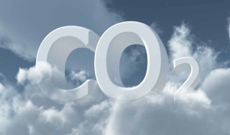 carbon-credits-scam