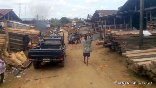 timber-market