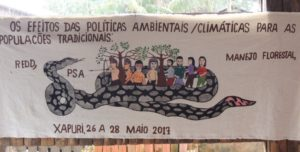 "Xapuri Declaration: ""We reject any form of climate colonialism"""